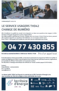 thd service usagers