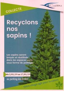 RECYCLONS SAPIN 2019